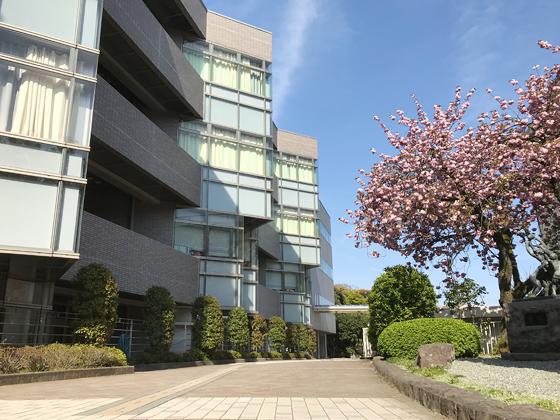 相洋中学校 校内風景