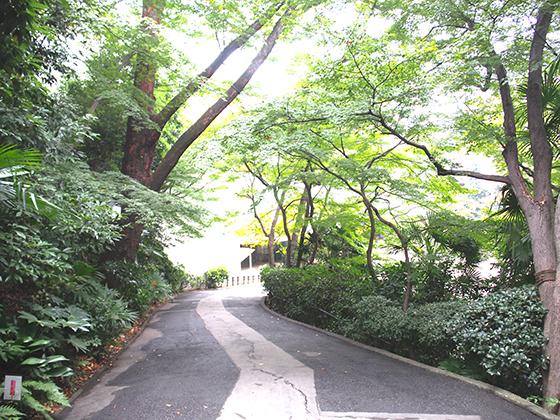 頌栄女子学院中学校/敷地内