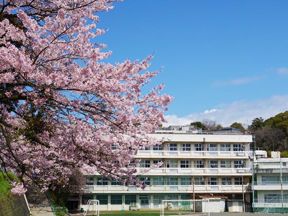 相洋中学校 校舎